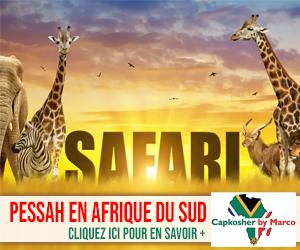 Pessah Safari