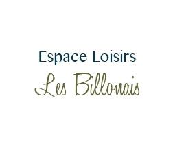 Espace Loisirs Les Billonnais - 1