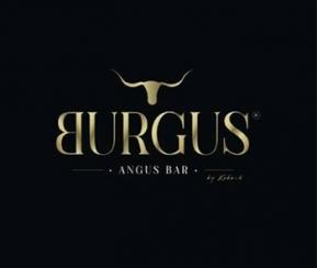 Burgus - 1