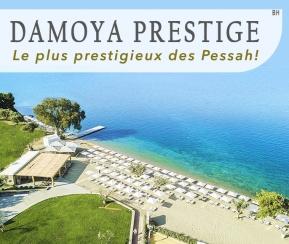 Damoya Prestige - 1