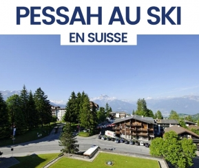 Kashertels Shlomo Bouskila Pessah 2020 Suisse - 1